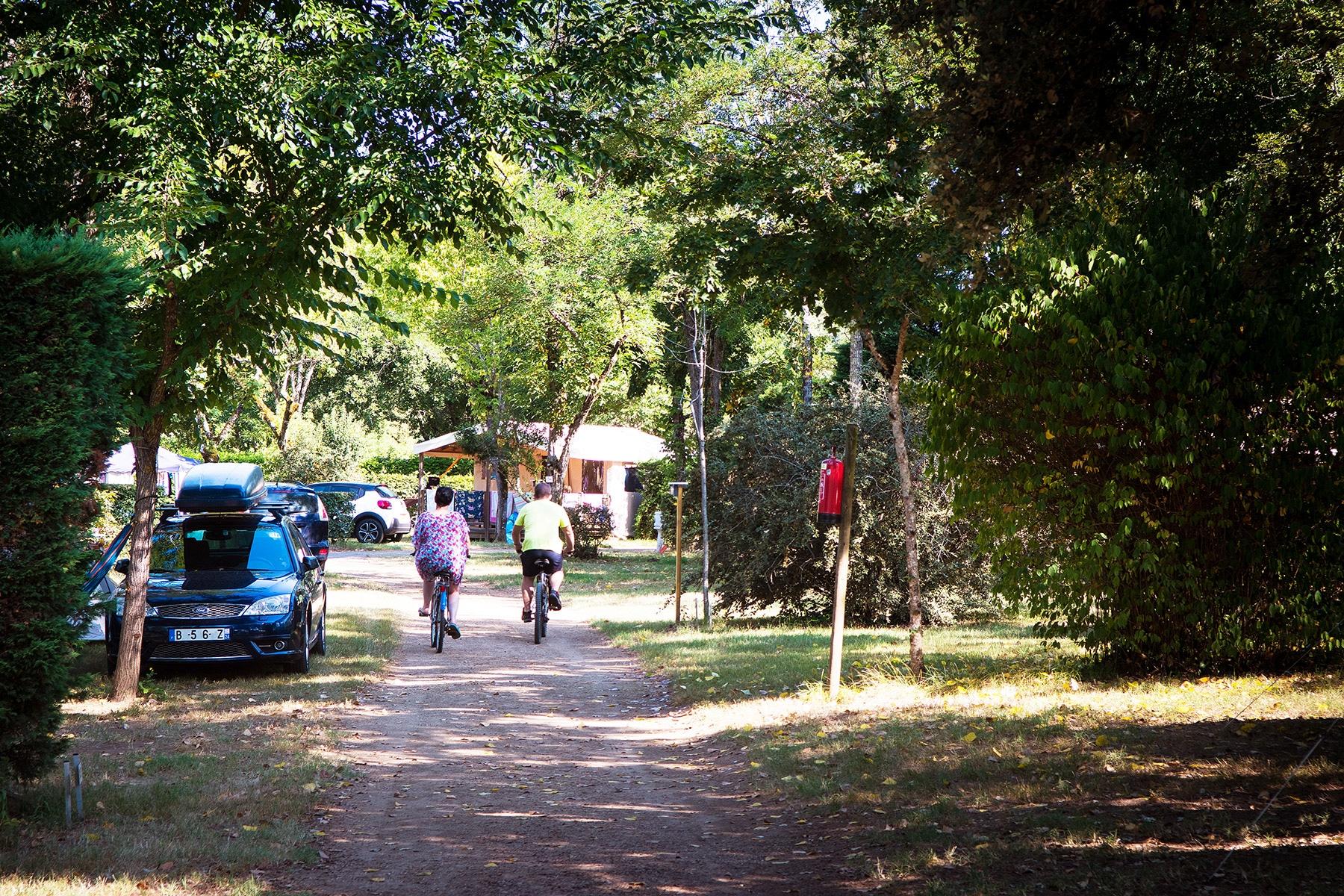 Allées du camping en Dordogne