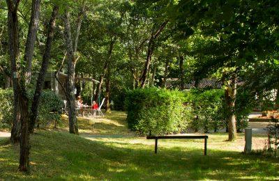 Camper en pleine nature